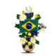 Brazil ws 1